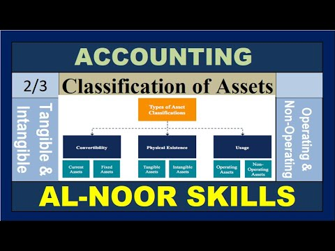 Tangible & Intangible Assets /  Operating & Non-Operation Assets