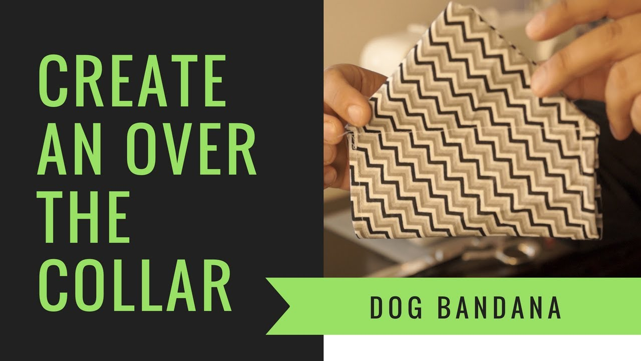 How To Make A Bandana For A Small Dog