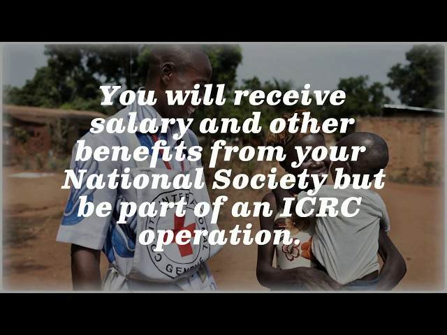 Choosing Your Possible Future Employer Icrc Or Your National Red