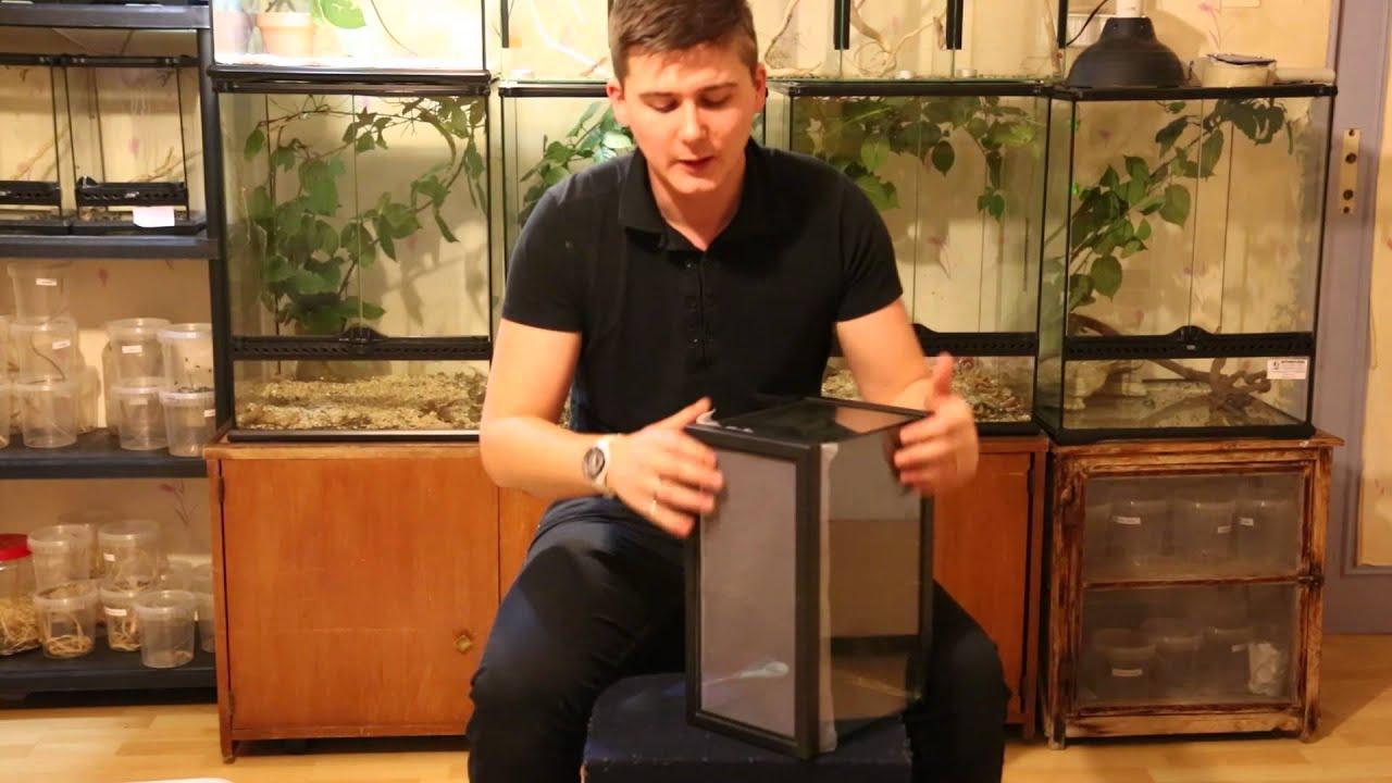 Un terrarium pour moins de 6e c 39 est possible youtube - Se meubler pour pas cher ...