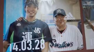 """""""山田哲人のすべて"""" 2年連続トリプルスリー達成記念 ADIDAS presents T..."""