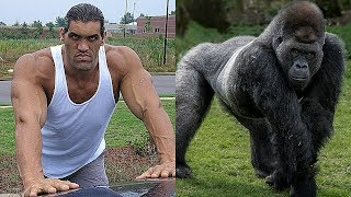 25 WWE WRESTLERS Who Look Alike ANIMALS ★ 2018