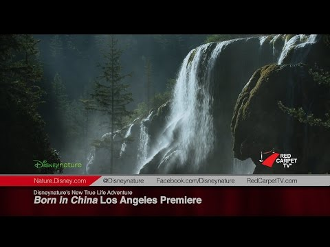 """Disneynature's """"Born in China"""" Los Angeles Premiere"""
