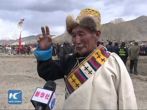 Spring plowing ceremony held in Tibet