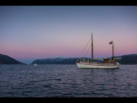 Whale watching in Tromsø, Norway 30.11.2014
