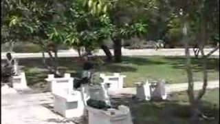 The Trumpets and the Trombones of Las Tunas, Cuba