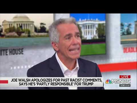 Joe Walsh: 'I've Said Racist Things On Twitter,' But I'm Not A Racist