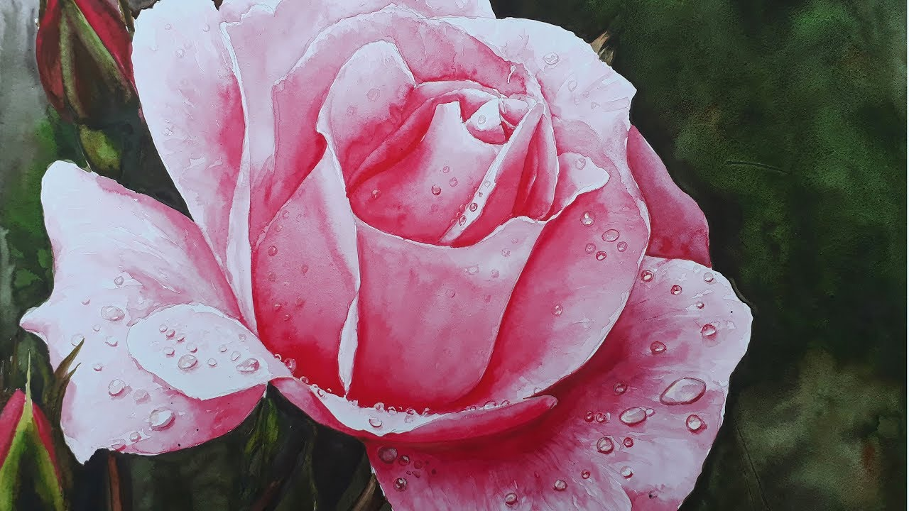 Realistic Rose in Watercolor Painting Tutorial with water ...