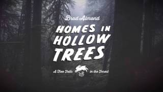 Homes in Hollow Trees