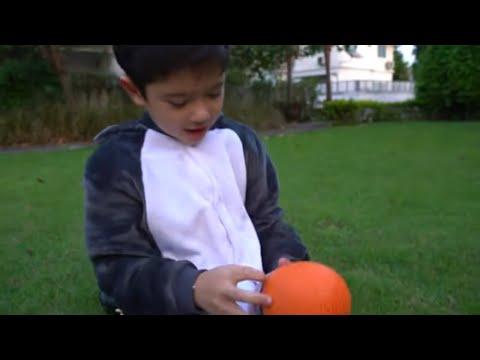 สกายเลอร์ | 🦖 ตามล่าหาไข่ไดโนเสาร์ยักษ์ ผจญภัย ฟักไข่ไดโนเสาร์/ DINOSAUR EGGS DISCOVERED!