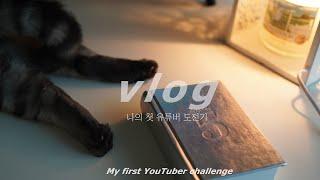 sub) vlog, 감성 브이로그, 고양이와 함께 샐러…