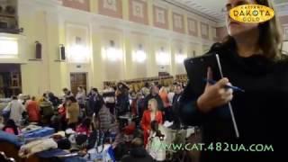Выставка собак, Харьков, 30 октября 2016, видео 2