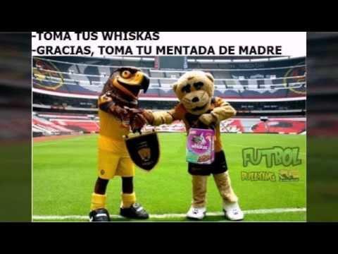 hqdefault los mejores memes del america vs pumas youtube,Memes America Pumas 2016
