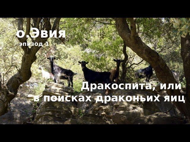 #56 Греция, о.Эвия: Что такое дракоспиты? В поисках драконьих яиц