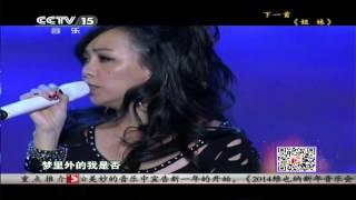 CCTV梦想中国公益演唱会 听海 张惠妹