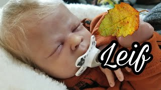 Morning Routine Of Reborn Baby Doll Leif - My Life Like Baby Doll