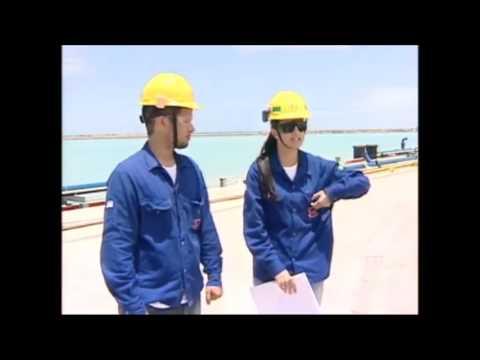 Estaleiro Jurong - um gigante na construção de navios em terras capixabas!!