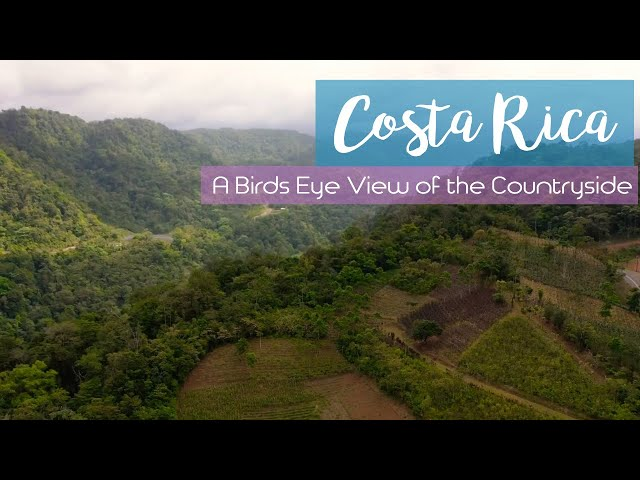 A Birds Eye View of Costa Rica's Countryside - 4k Drone Footage