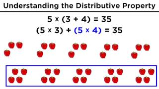 The Distributive Property for Arithmetic