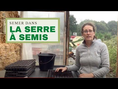Comment semer dans sa serre à semis ?