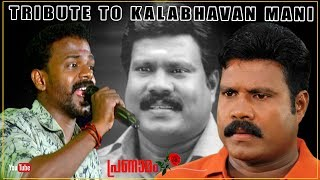 മണിച്ചേട്ടന്റെ ഓർമ്മകൾക്ക് മുൻപിൽ...| Tribute To Kalabhavan Mani | Manichettan Song | നാടൻപാട്ടുകൾ