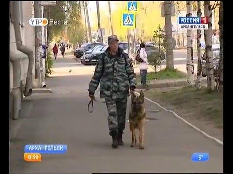 В Архангельске трое преступников, которые сбежали из зала суда, задержаны