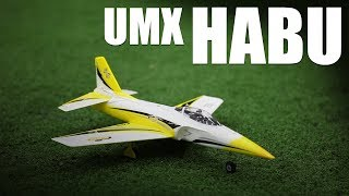 Flite Test - UMX Habu - REVIEW