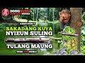 """Dongeng Sunda Abah Ocin """"sakadang Kuya Nyieun Suling Tina Tulang Maung"""""""