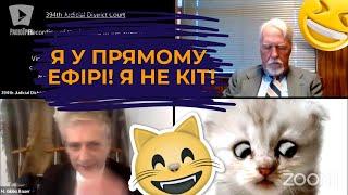 У США прокурор вів засідання суду з котячим фільтром