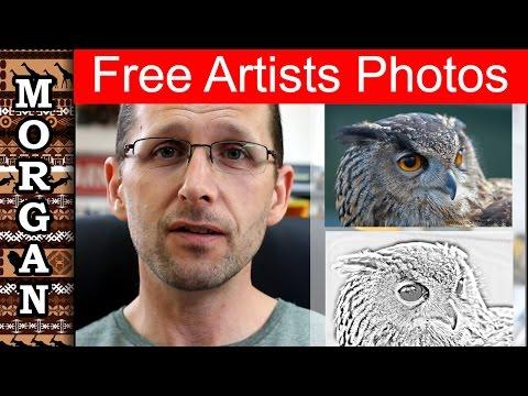 Free Art Reference photos - wildlife art - Jason Morgan