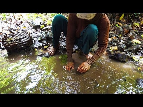 Download Kampong Cham Province | Drain Water To Catch Fish in Cambodia, Part 20
