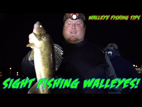 SIGHT Fishing Walleyes AT NIGHT!