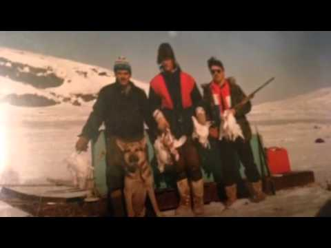 Sikumiut Labrador