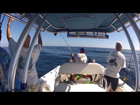 Sailfish and Mahi Fishing in Stuart Florida
