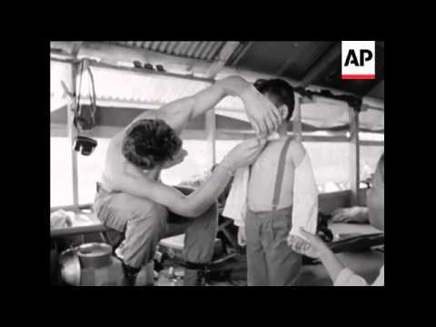 South Vietnam: Pacification, New Port: Thai Soldiers arrive