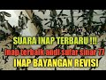 Suara Inap Terbaru Andi Sufar Sinar  Inap Bayangan Revisi Original  Mp3 - Mp4 Download
