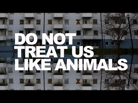 Do not treat us like animals (english subtitles)