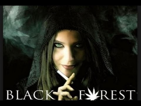 BLACK FOREST  CZARNY LAS  CAŁY FILM LEKTOR PL Fantasy,Horror