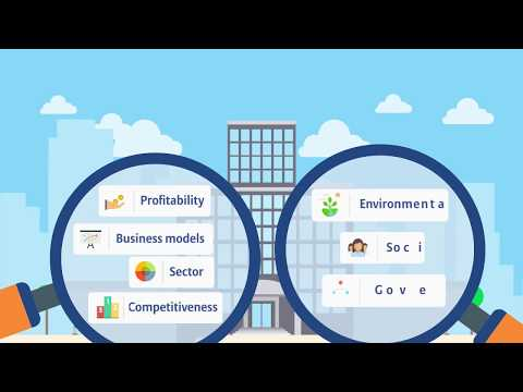 What is ESG?