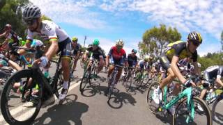 Santos Tour Down Under - Australia's Greatest Cycling Race