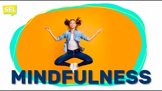 SEL Video Lesson of the Week (week 29) - Mindfulness and Stress Management