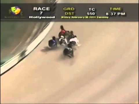 Amazing Greyhound Race.flv