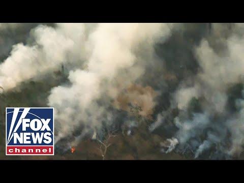 Amazon rainforest wildfires