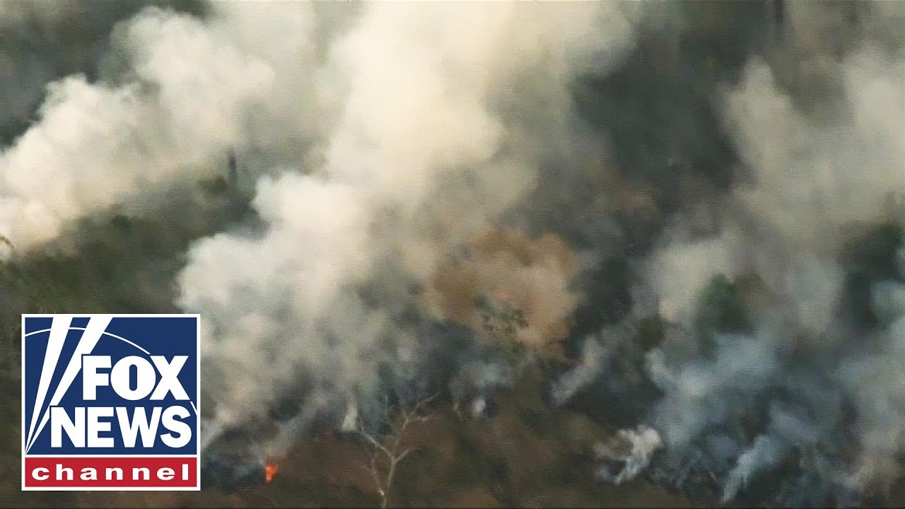 Amazon rainforest wildfires hit alarming record