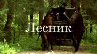 Король и Шут - Лесник (фан клип)