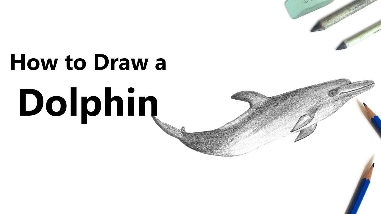 drawing tutorials 101