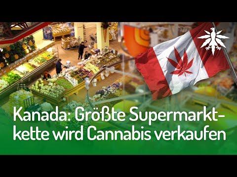 Kanada: Größte Supermarktkette wird Cannabis verkaufen | DHV-News #164