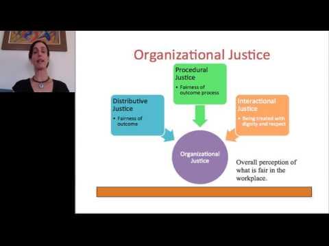 Organizational Justice