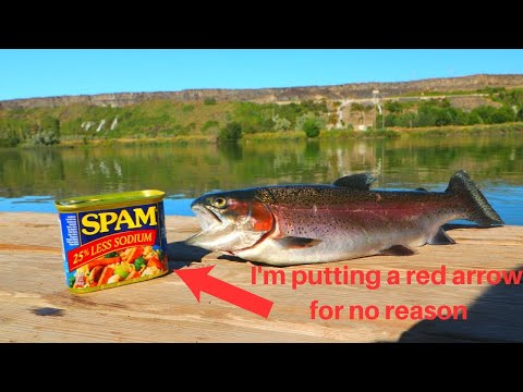 Catch N' Cook River Rainbow Trout (Fried In Spam!)