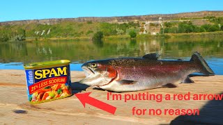 Clear Water Trout Fried in Spam! (BAM!!!)